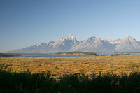 Yellowstone & Grand Tetons